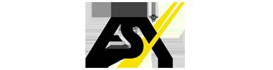 ESX logo